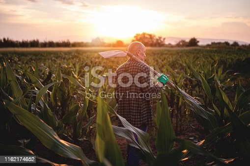 621898406istockphoto Retired farmer visiting his crop fields 1162174652