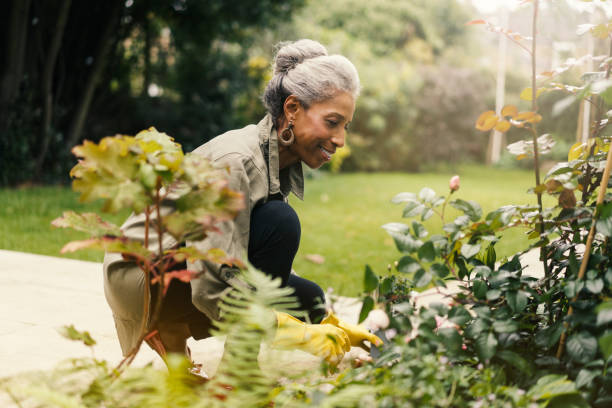 Retired senior woman gardening in back yard Side view of smiling senior woman crouching by plants. Happy retired female is gardening in back yard. She is wearing casuals. hobbies stock pictures, royalty-free photos & images