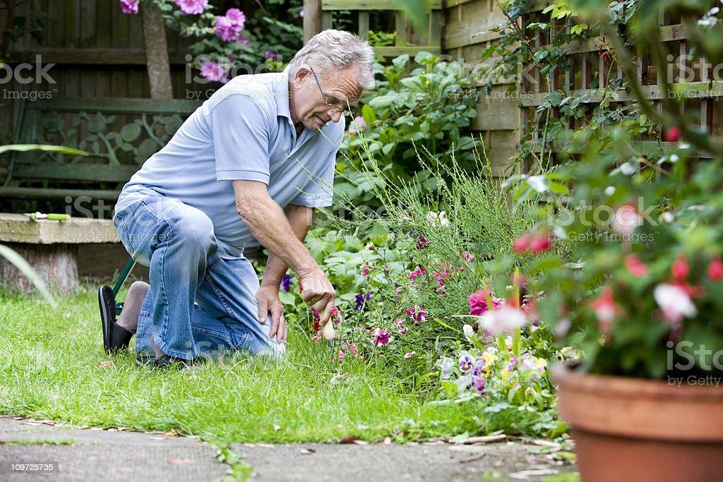 Ruhestand: Aktive senior Betreuung seinem Garten – Foto