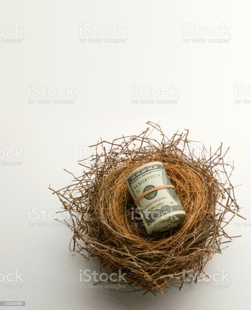 Retirement Nest Egg royalty-free stock photo
