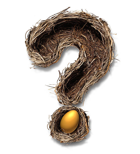 Retirement Nest Egg Questions Retirement nest egg questions and savings as a financial planning business concept with a bird nest metaphor shaped as a question mark with a golden egg on a white background. nest egg stock pictures, royalty-free photos & images