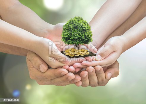 958039576istockphoto Retirement planning and family investment concept with wealthy tree growing on parent - children's hands 962006106