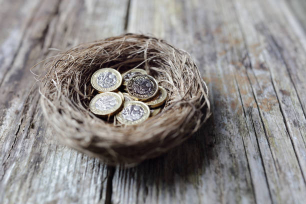 Retirement savings British pound coins in birds nest egg stock photo