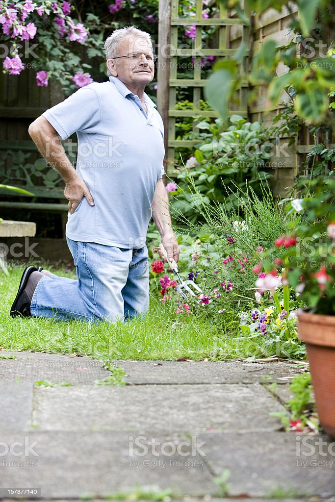 retirement: senior man stretching from gardening to relieve back ache stock photo