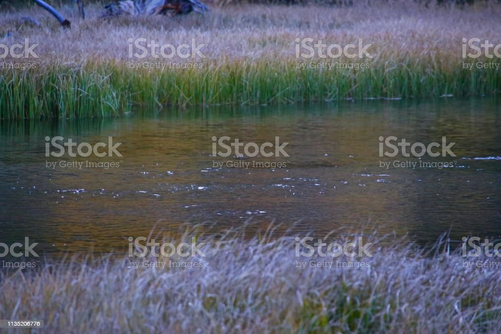 Retreat stock photo