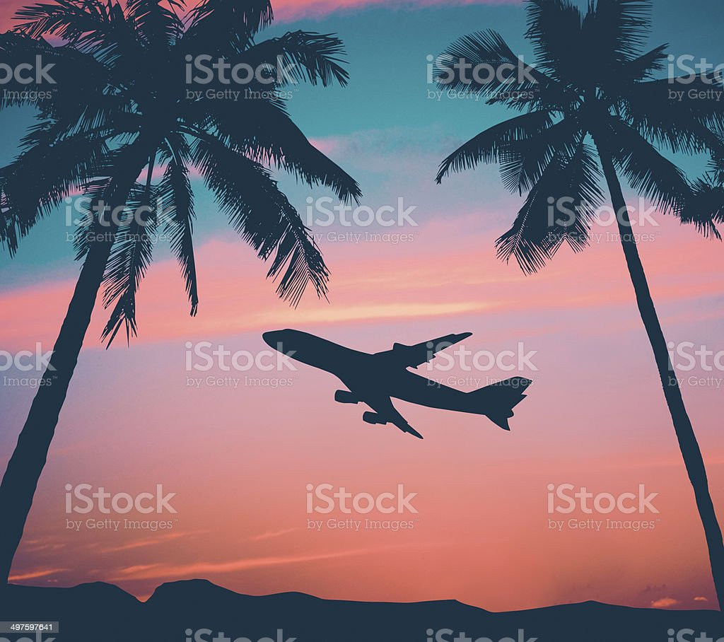Retro Airliner With Palm Trees stock photo