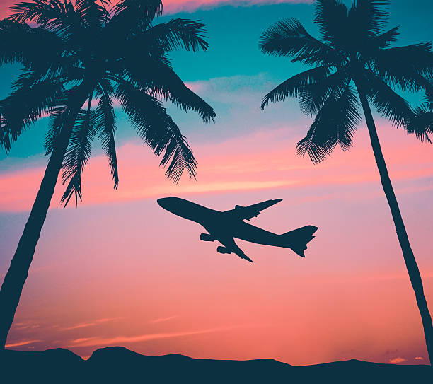 Retro Airliner With Palm Trees Retro Style Photo Of Plane Over Tropical Scene big island hawaii islands stock pictures, royalty-free photos & images