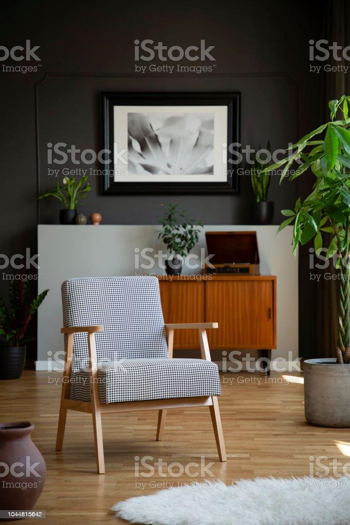 Retrosessel Und Baum In Einem Wohnzimmer Interieur Mit Einem Schrank ...