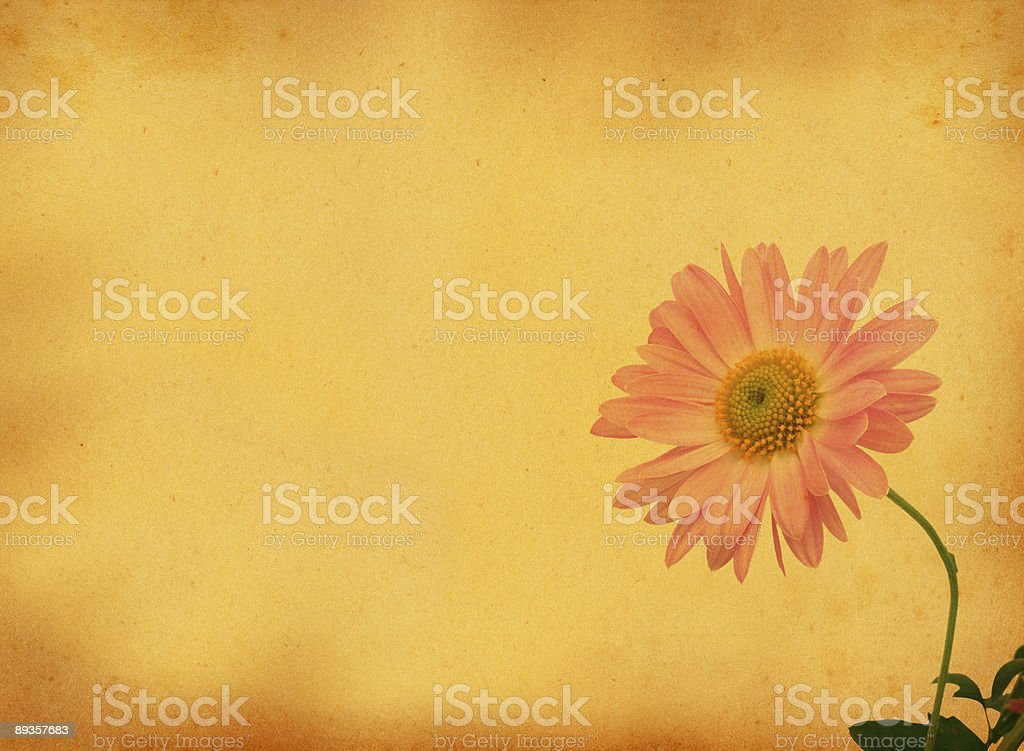 retro background with flower motive royalty-free stock photo