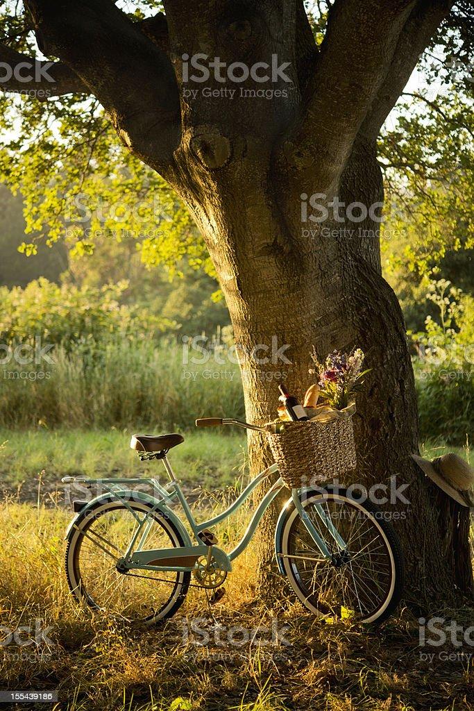 Bicicleta Retro con vino tinto en cesta de Picnic XXXL - foto de stock