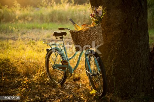 Vintage style bike with a wicker basket containing champagne / white wine, flowers, bread and other goodies for a late afternoon picnic.  Shallow DOF.