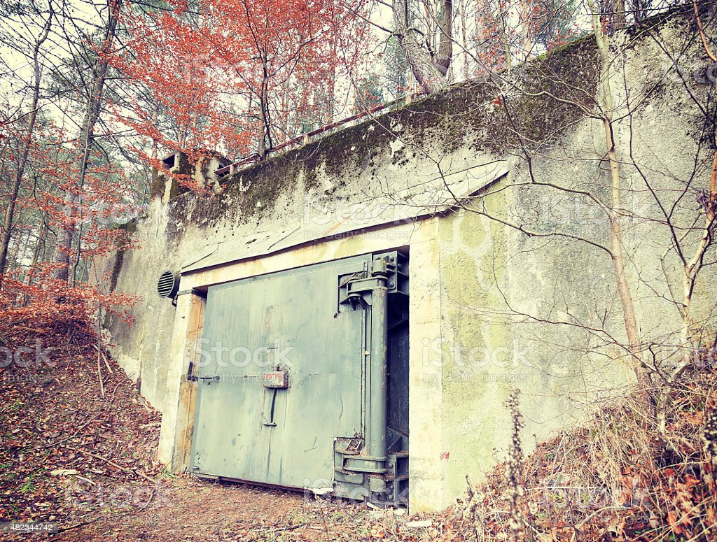 Retro filtered picture of a bunker in forest. stock photo