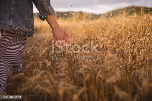 Retro looking girl in denim jacket brushing her hand through a golden wheat field.