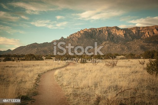 a trail cuts through a desert meadow filled with grasses leading to rugged mountain peaks on the horizon at sunset underneath a moody sky.  horizontal wide angle composition with retro color treatment.