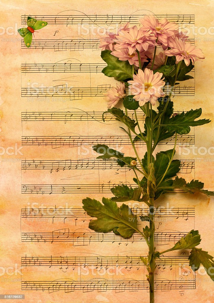 Retro Сollage: chrysanthemum with sheet music and butterfly stock photo