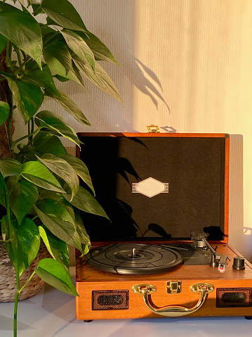 A retro looking record player made of wood can be seen in the picture. A plant is on the left side of the the player and golden light is shining onto it.