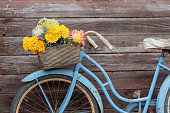 Vintage blue bike with basket of flowers on wood background