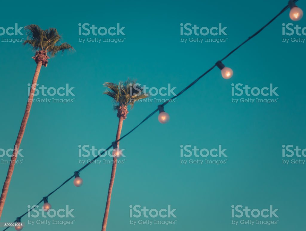 Retro Style Tall Palms at Sunset with Lights and Copy Space stock photo