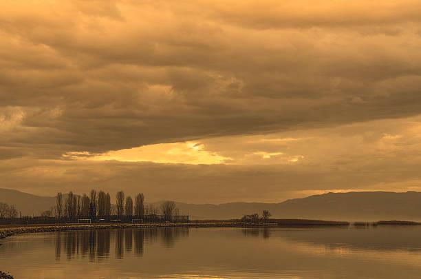 Arbre rétro réflexion sur le lac - Photo