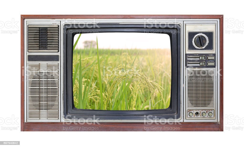 Retro television on white background with image of rice field on screen. stock photo
