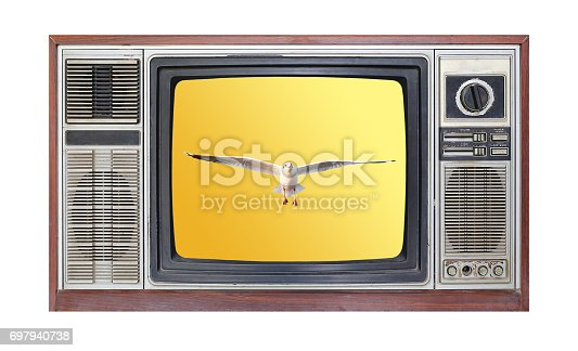 istock Retro television on white background with image of seagull flying in sky on screen. 697940738