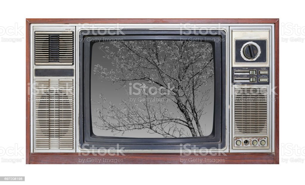 Retro television on white background with image of tree in black and white on screen. stock photo