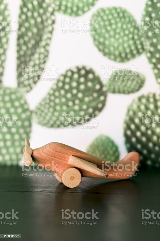 retro wood toy airplane on table with green cactus background.