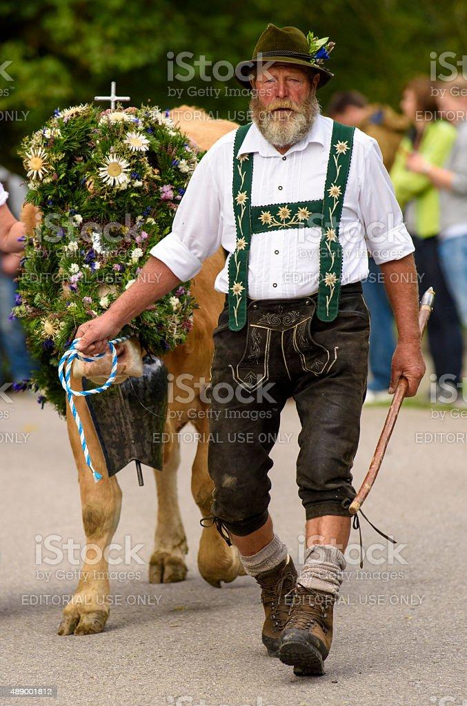 Rückgabe der Kühe von den Weiden zu mountain valley in Bayern – Foto