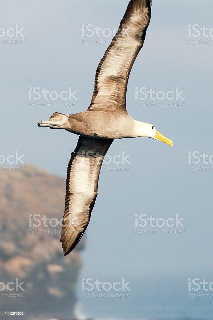 Return to Suarez Point stock photo