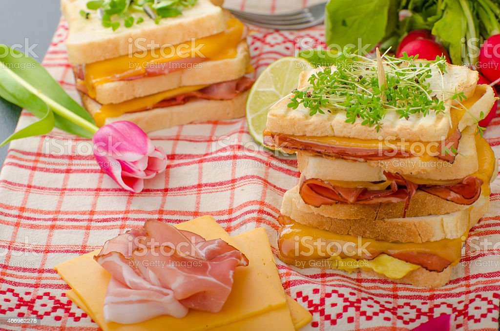 Reuben sandwich with cabbage, beef and spicy dressing stock photo