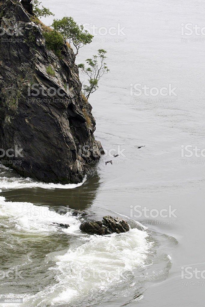 Reversing Falls, Saint John, NB royalty-free stock photo