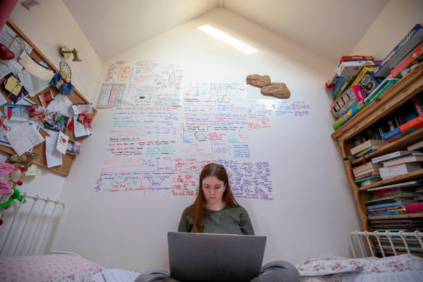 revising from home - girl study home laptop front imagens e fotografias de stock