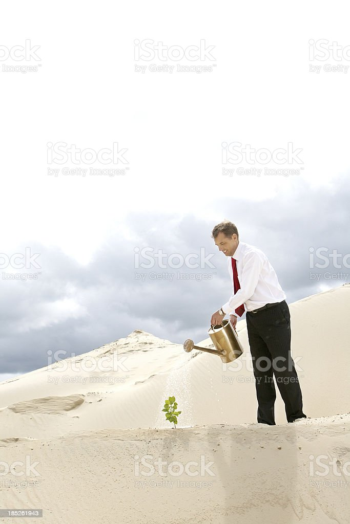 Reviving the desert stock photo