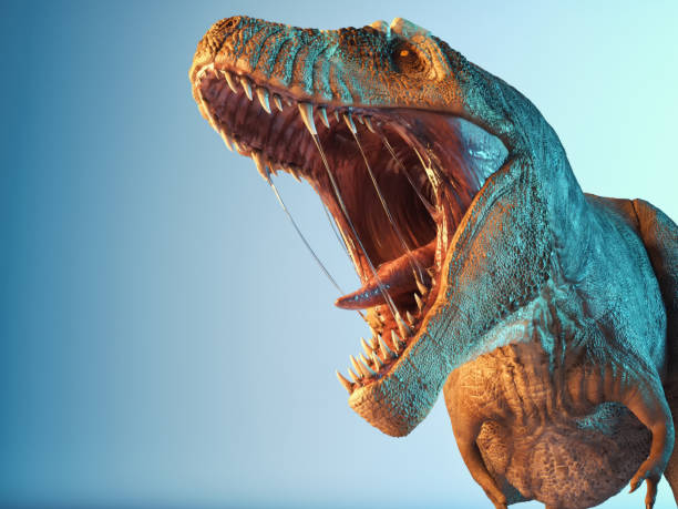T rex close up roar in the studio. This is a 3d render illustration. stock photo