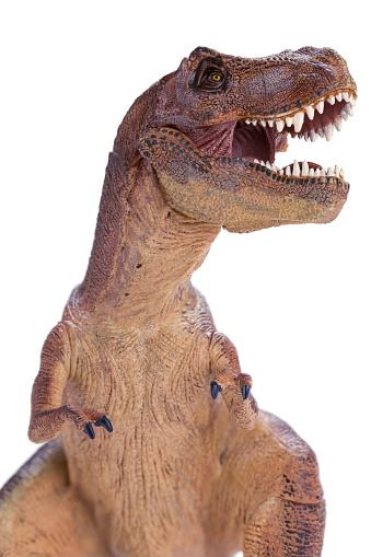 T Rex Close Up Side View Stock Photo Download Image Now Istock