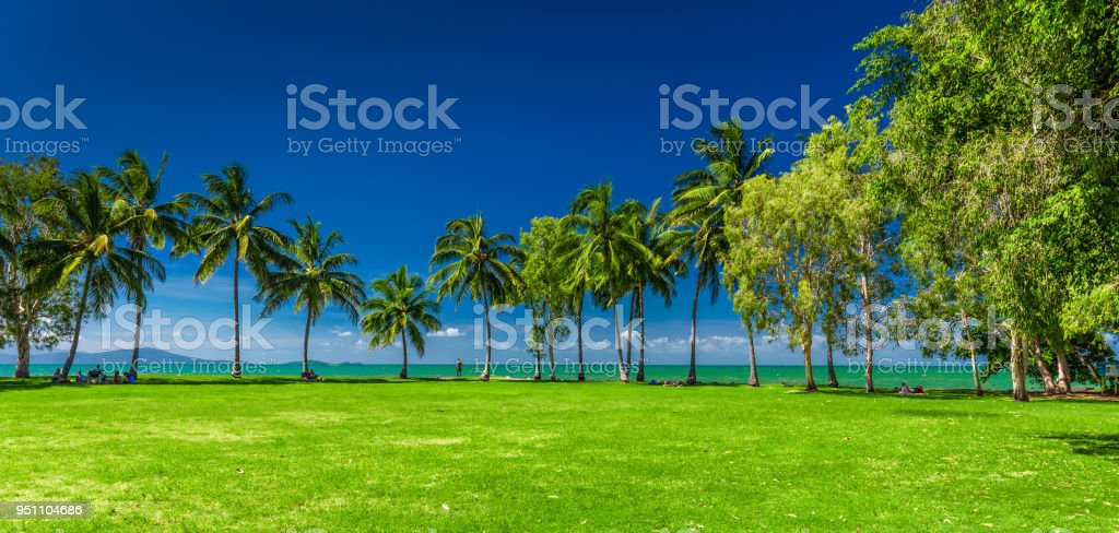 PORT DOUGLAS, AUSTRALIA - 27 MARCH 2016. Rex Smeal Park in Port Douglas with tropical palm trees and beach, Australia stock photo