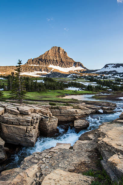 reynolds mountain at logan pass, glacier national park - us glacier national park stock pictures, royalty-free photos & images