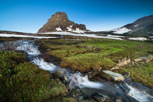 reynolds mountain at logan pass, glacier national park - logan pass stock pictures, royalty-free photos & images