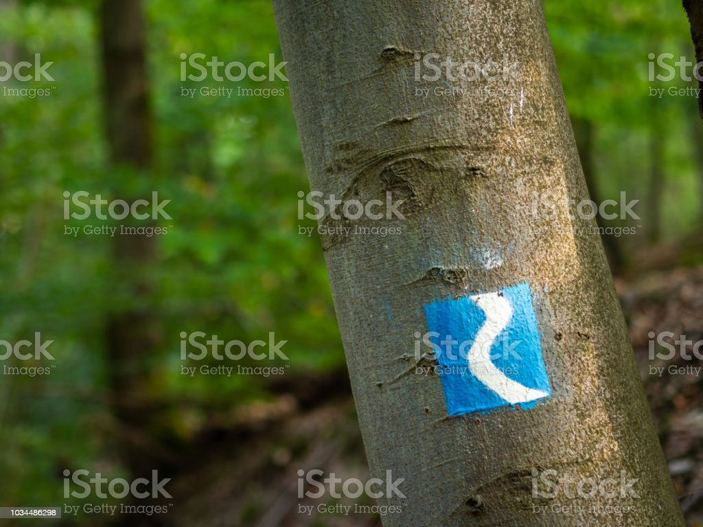 Rheinsteig sign painted on a tree along the trail in Germany - Royalty-free Backgrounds Stock Photo