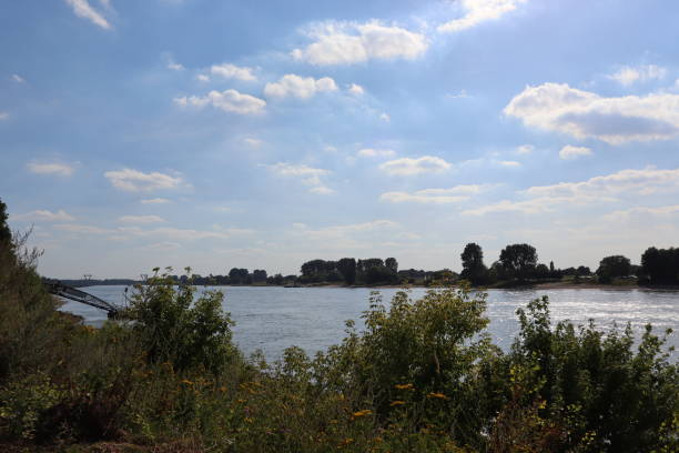 rhine river panorama view at the river rhine alias stock pictures, royalty-free photos & images