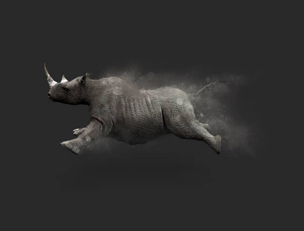 Rhino moving and jumping A Rhino moving and jumping with dust particle effect on gray background, 3d illustration rhinoceros stock pictures, royalty-free photos & images