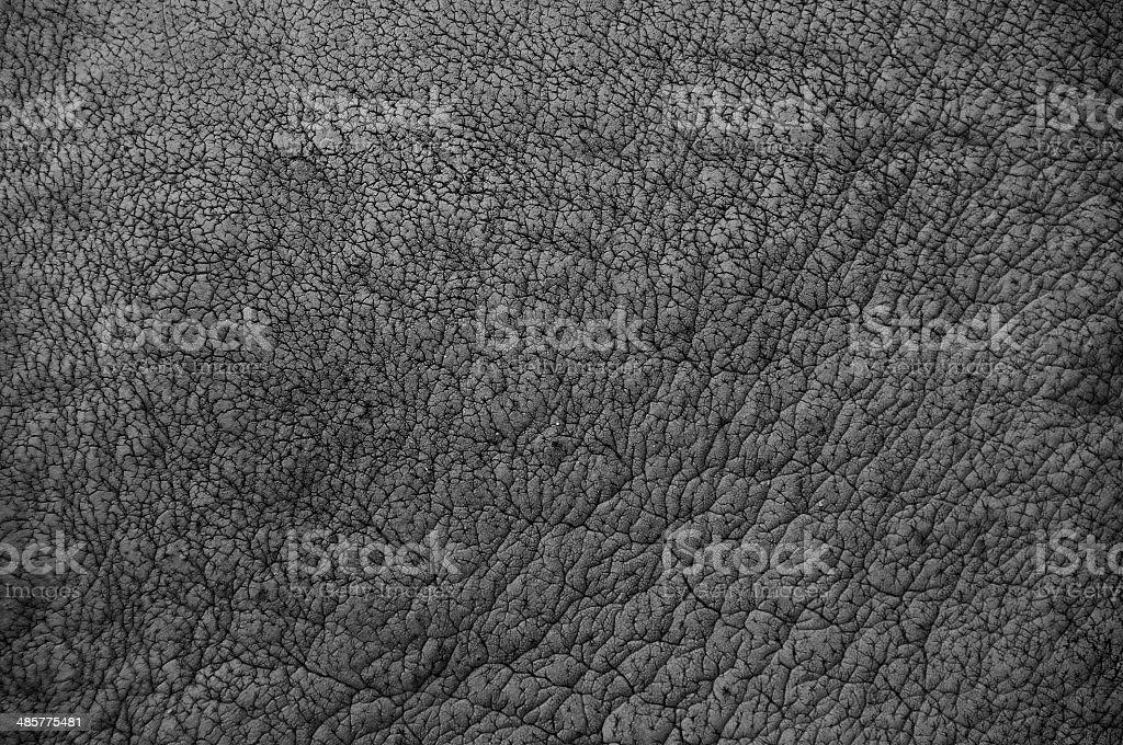 Rhino skin pattern black and white. stock photo