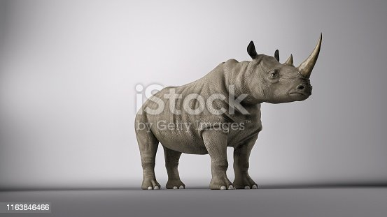 Rhinoceros posing in a photography studio. 3d render