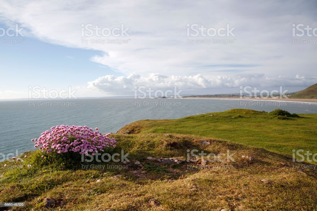 Rhossili Bay foto stock royalty-free
