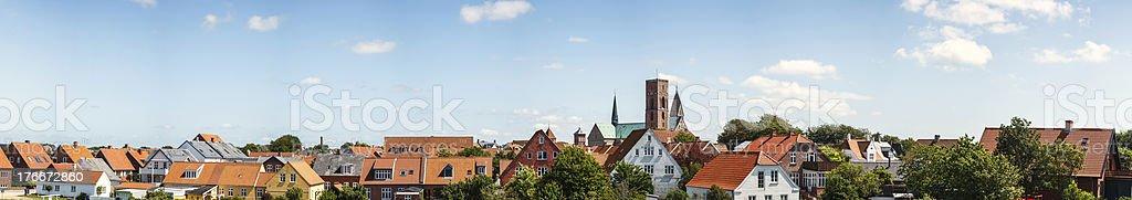 Ribe royalty-free stock photo