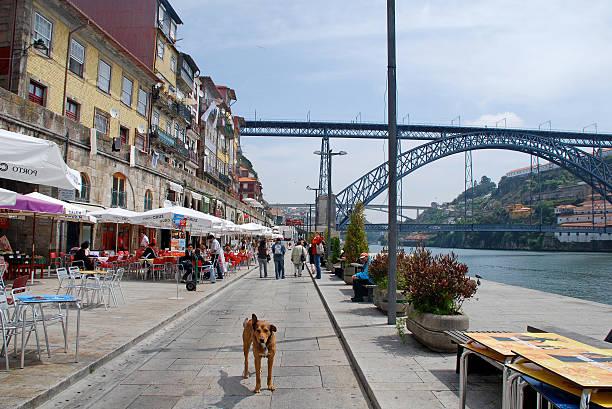 distrito de ribeira em porto, portugal. - esplanada portugal imagens e fotografias de stock