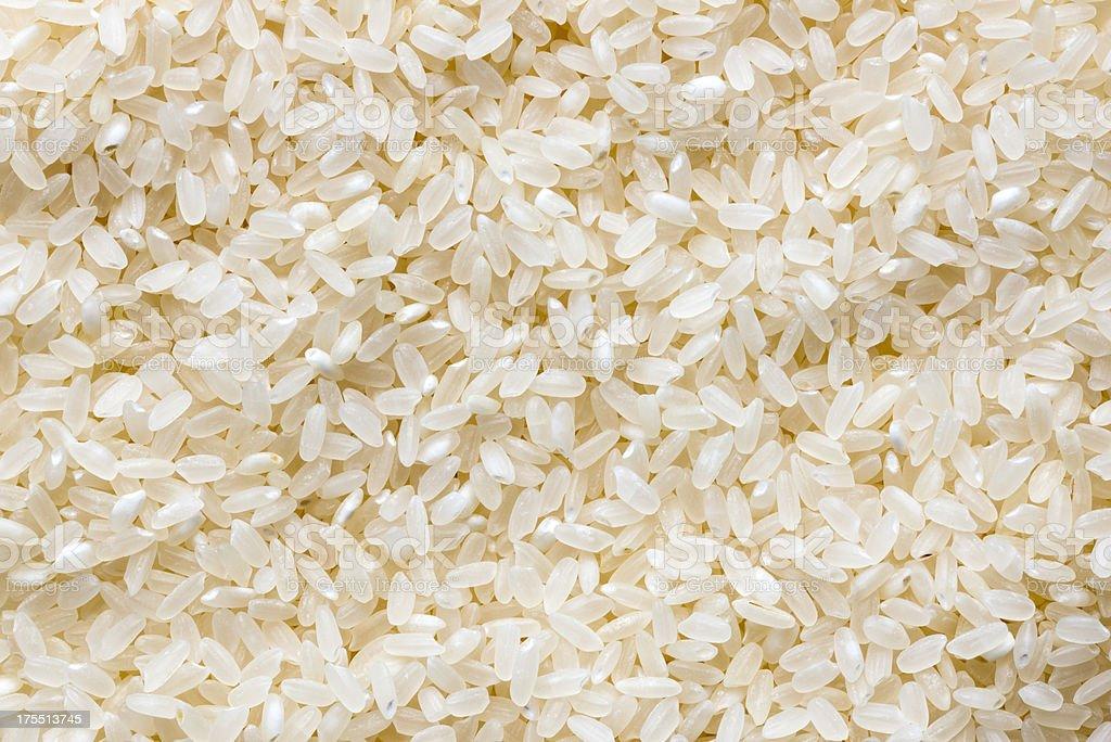 Fondo de arroz - foto de stock