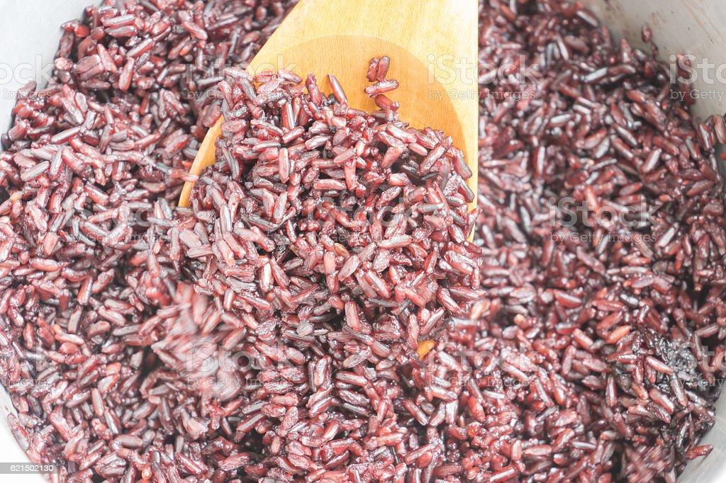 Rice berry cooked photo libre de droits