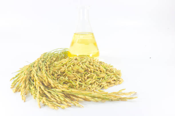 rice bran oil - ripe stock photos and pictures