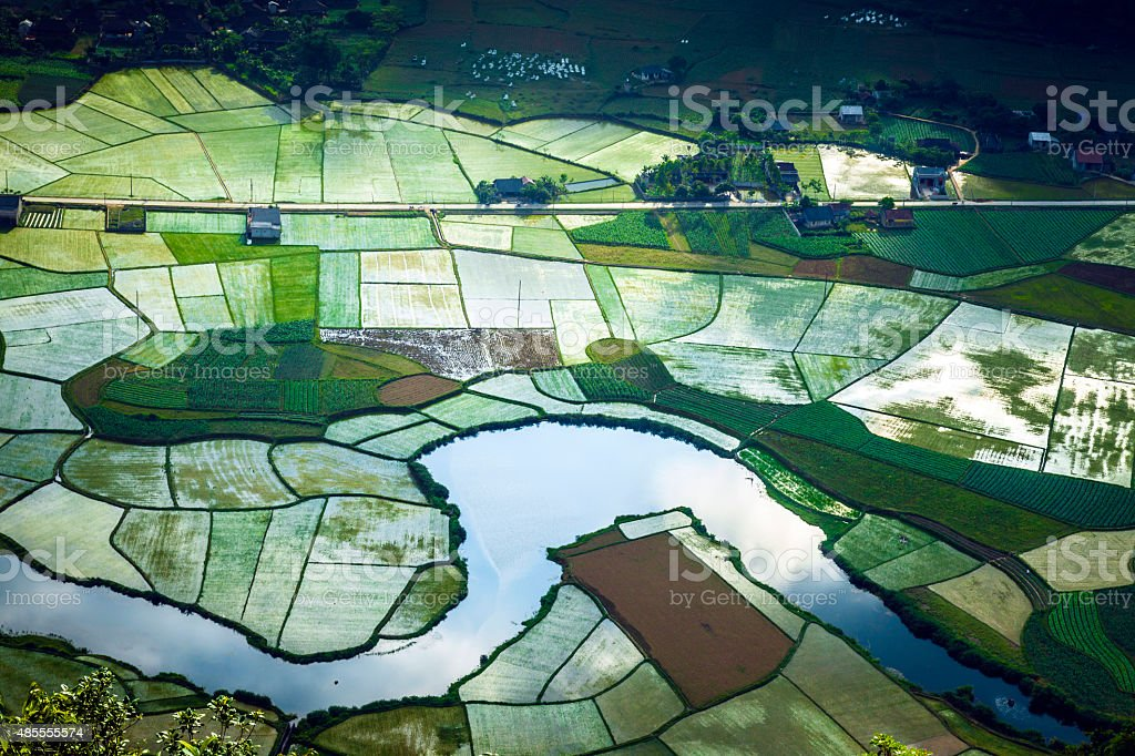 Rice field in valley in Lang Son, Vietnam stock photo